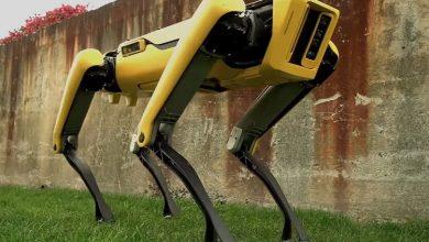 تصویر از رباتهای اسپات مینی را در حال کشیدن کامیون تماشا کنید