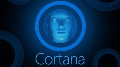 تصویر از کورتانا با ویژگی جدید Collections